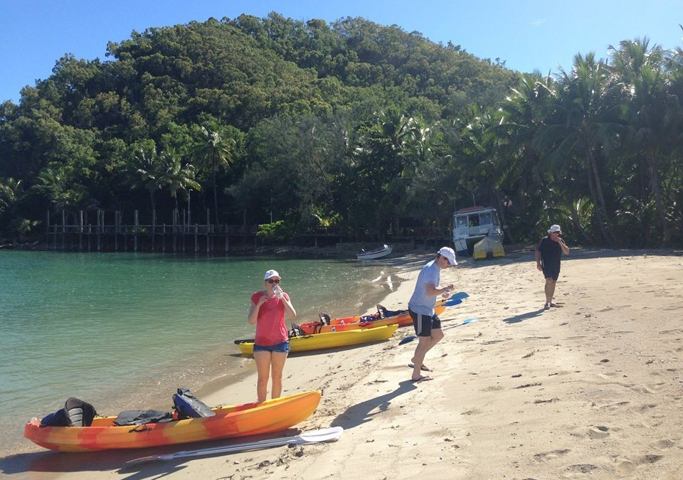 Kayaking In Palm Cove