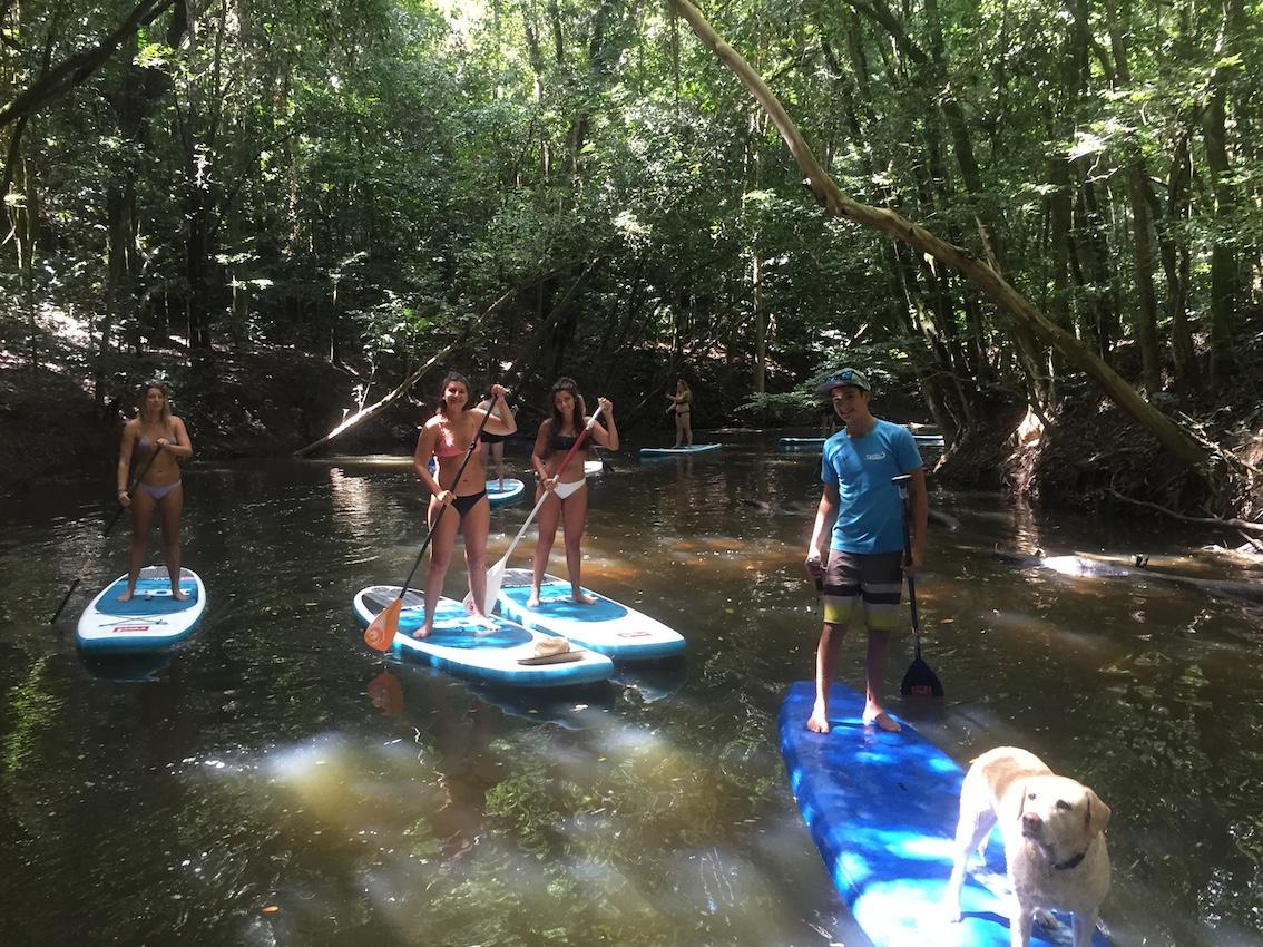 Rainforest Adventure SUP Tours
