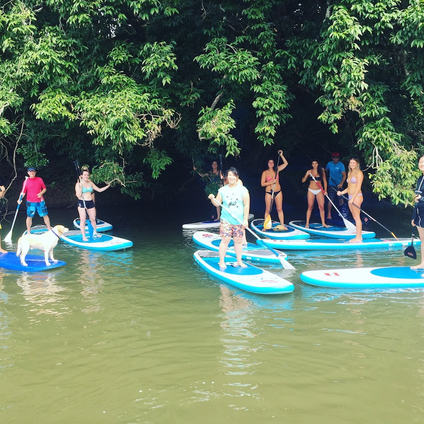 Things to do in Cairns - Rainforest Paddling
