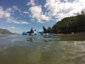 Snorkelling Double Island