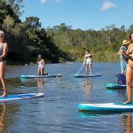 rainforest SUP Palm COve